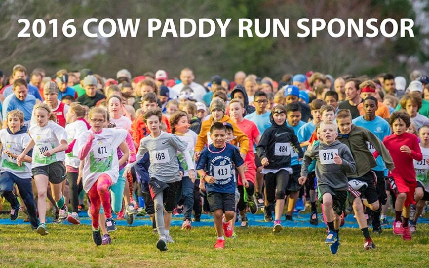Cow Paddy Race 2016
